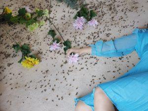 Fallen Bees