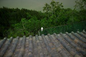 Untitled #14, Near Zhengzhou, along the Yellow River, Henan Province, China