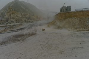Untitled #8, Near Lanzhou, Gansu Province, March 2013