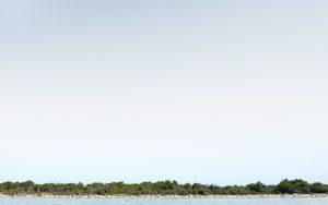 Landscape X, 2012