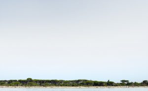 Landscape XI, 2012